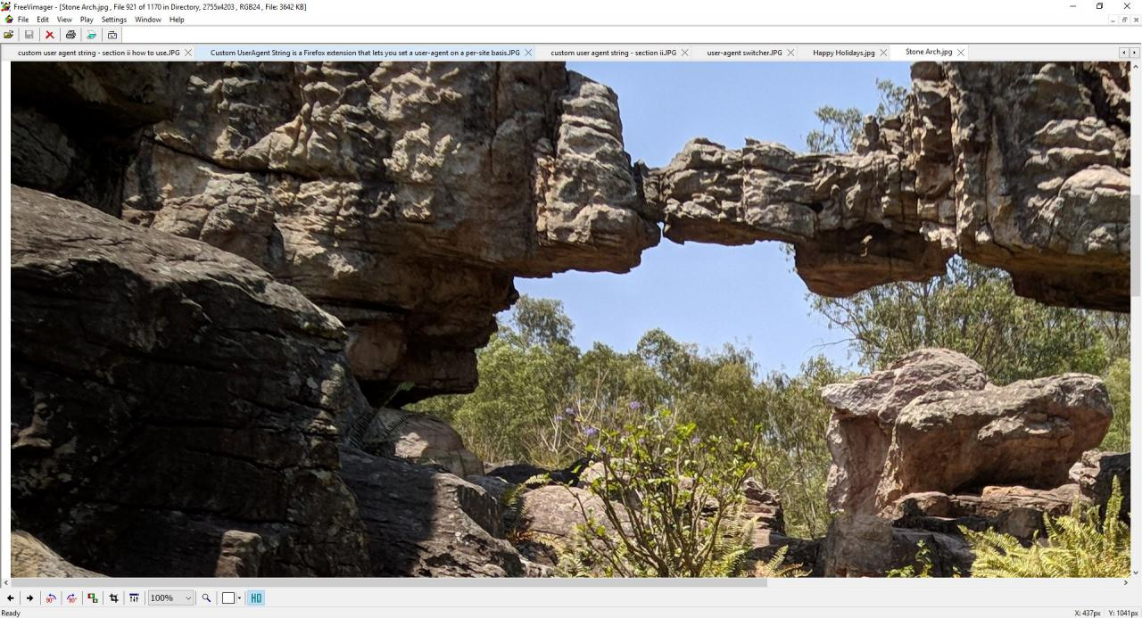 FreeVimager is a free image viewer and editor for Windows